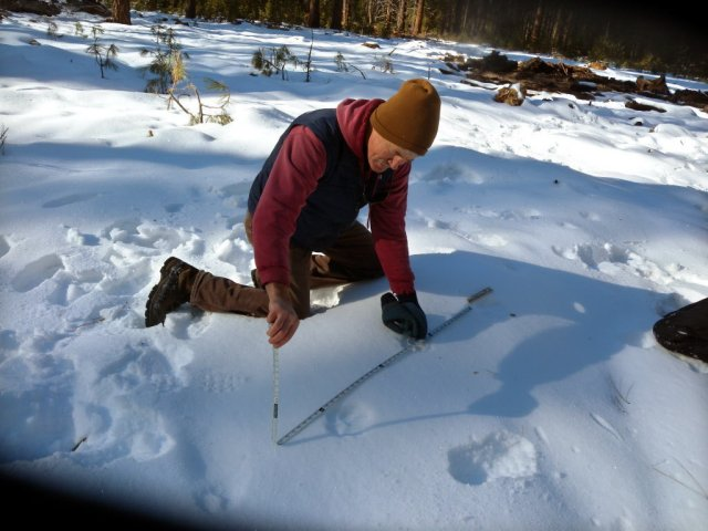 John Stephenson, US FWS, measuring Journey's tracks south of Crater Lake in November of 2011.