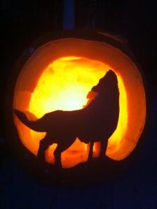 pumpkins 008