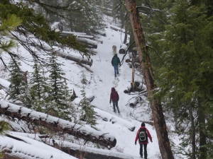 A snowy hike in Oregon Wolf Country