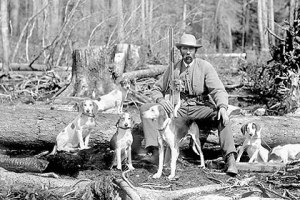 hound photo