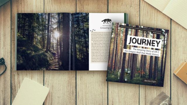 Journey-spread-1.jpg