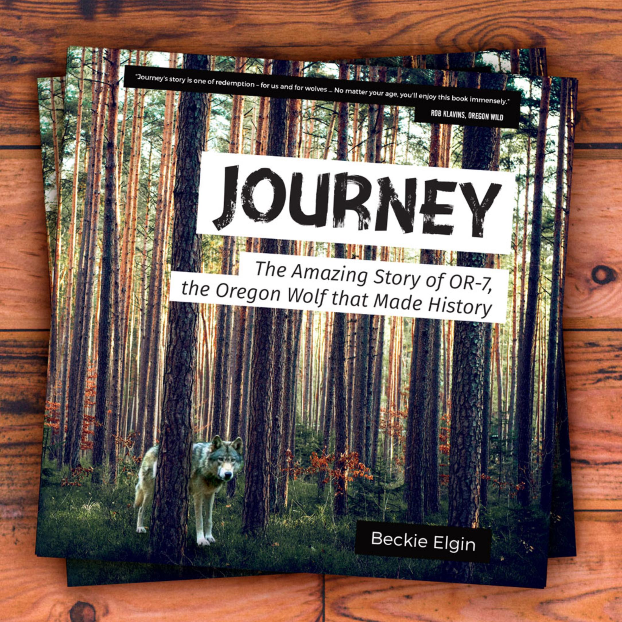 Journey-stacked-2.jpg