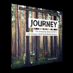 journey_angle