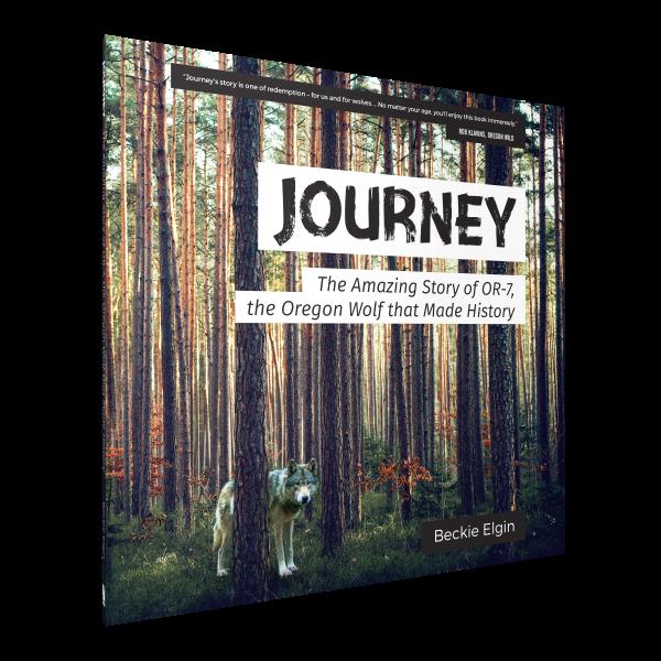 Journey_angle.png