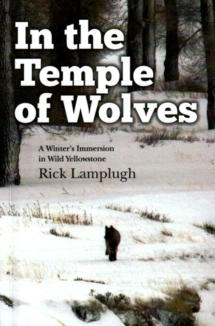 temple-of-wolves